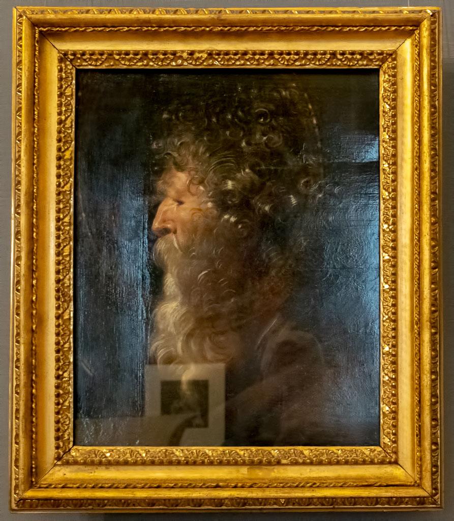 Palazzo Corsini: Rubens - Head of an Old Man