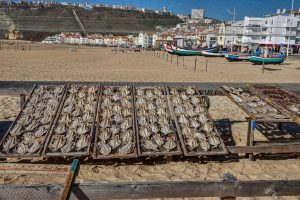 191010-27-Nazare-26-Beach-fish-drying