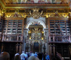 191013-30-Coimbra Library-3 max nathans